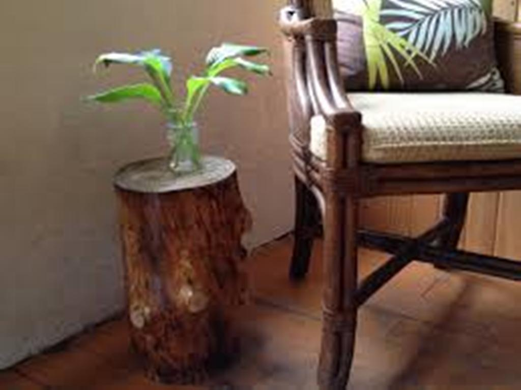 Image of: Stump End Table with Drawers for Living Room