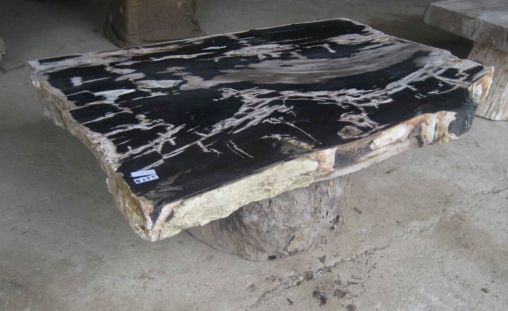 Picture of: thomasville petrified wood table