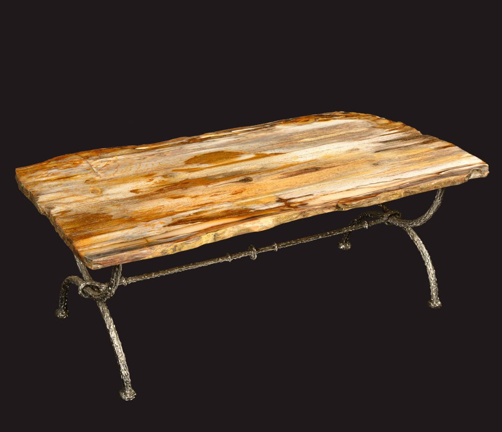 Image of: Petrified Wood Side Table Best Design