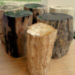 Petrified Wood Side Table Material