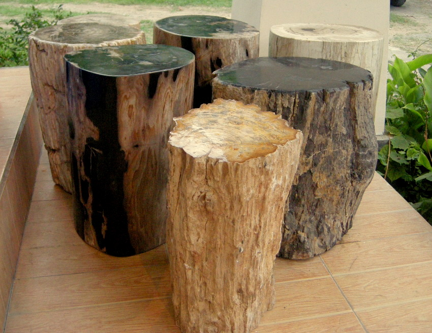 Image of: Petrified Wood Side Table Material