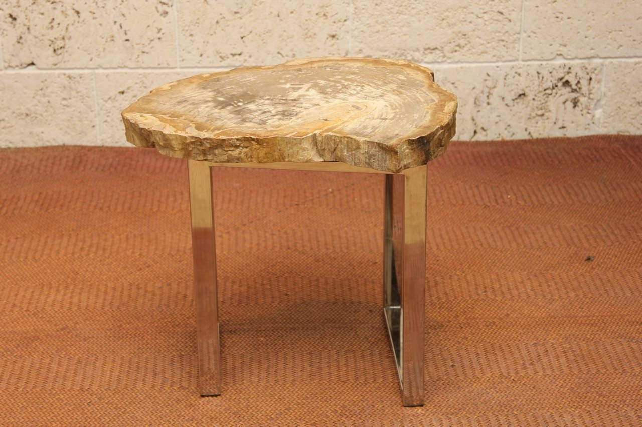 Image of: Petrified Wood Side Table Mini
