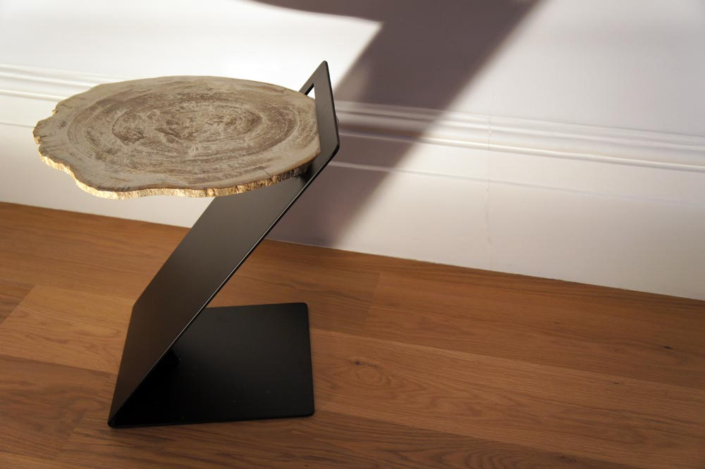 Petrified Wood Side Table Modern