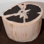 Petrified Wood Side Table Natural Color