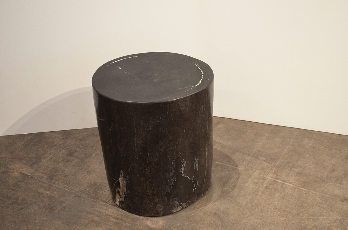 Image of: Petrified Wood Side Table Natural