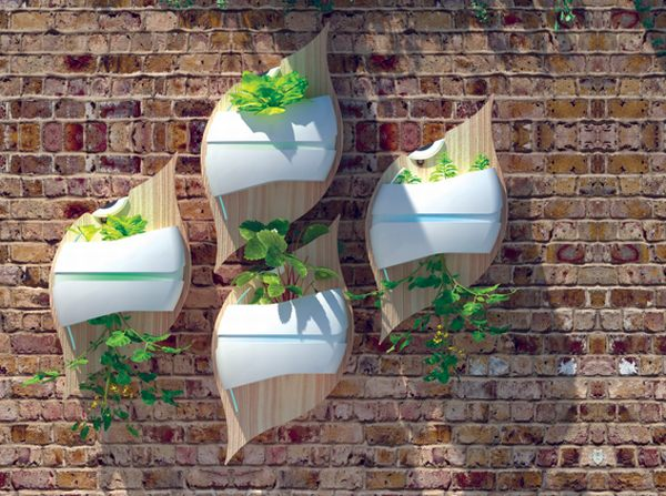 Wall Hydroponic Vegetable Gardening